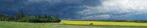 summer-storm-banner
