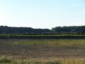 lumber-piles