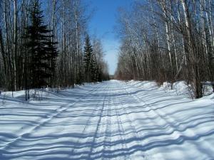 skidoo-trail