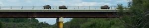 bison on bridge banner