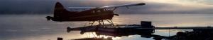 beaver sunrise banner