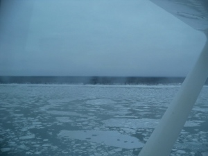 No wonder the ferry was pulled out... quite a bit of ice on the Mackenzie (Nov 1)